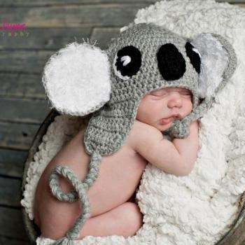 pdf crochet pattern( how to tutorial) Koala hat size newborn- 1 years